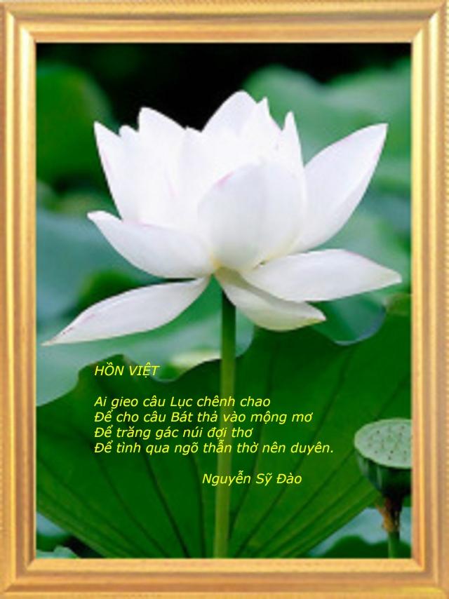 Hồn Việt 2